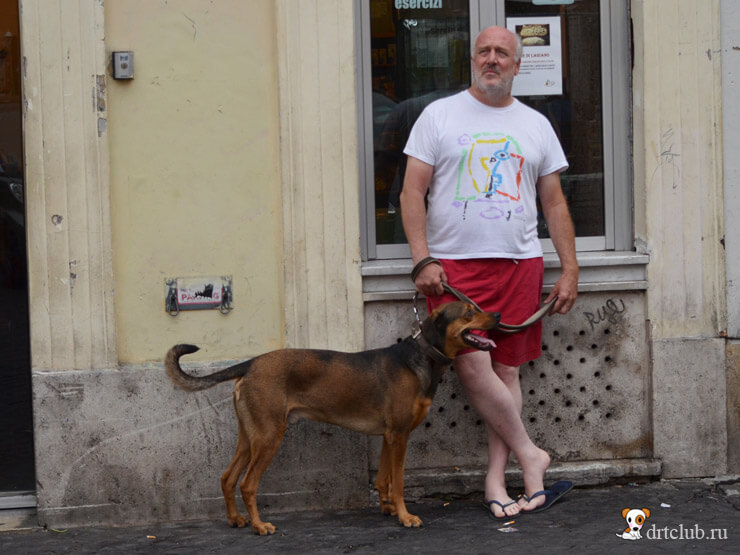 Хозяин и собака