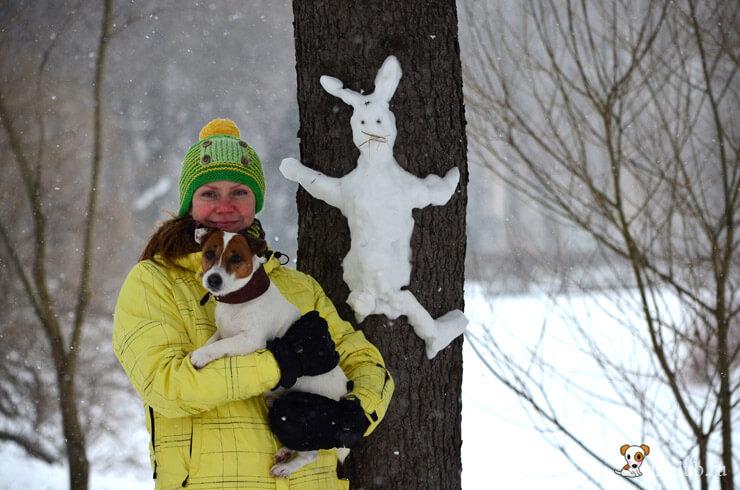 Выходные с собакой