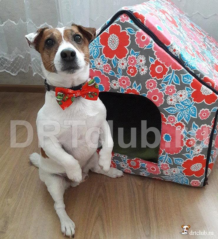 Мягкий домик из поролона для собаки