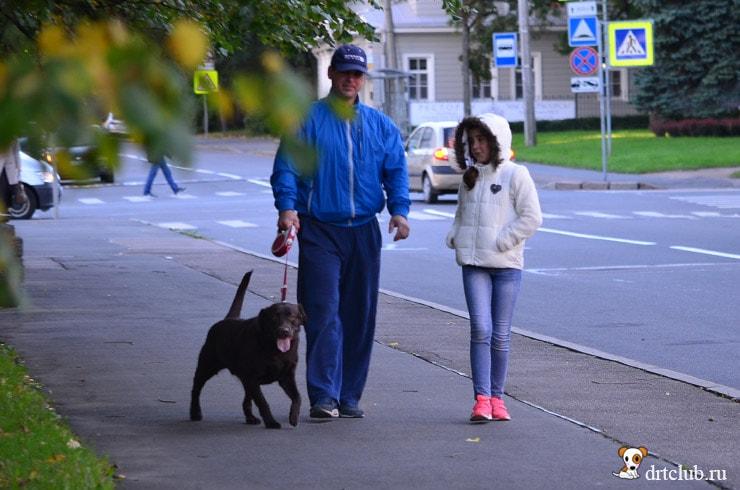 С собакой в Пушкин