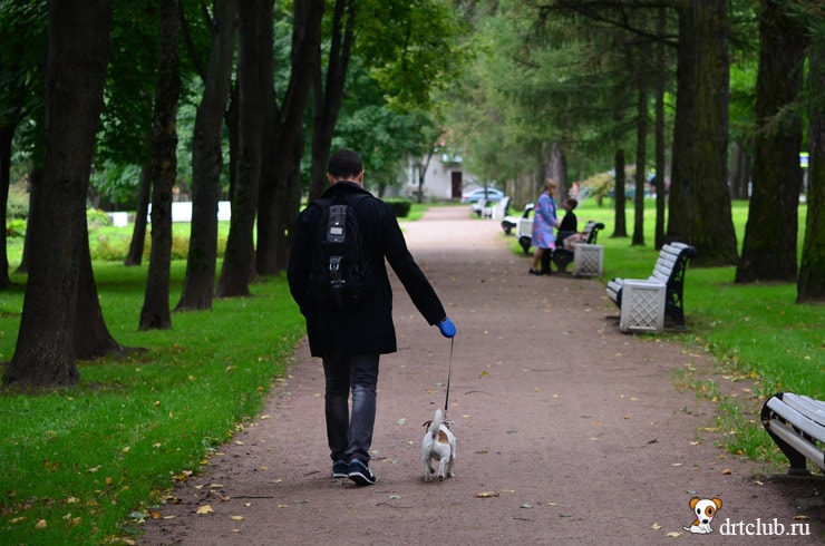 Гуляем в Пушкине