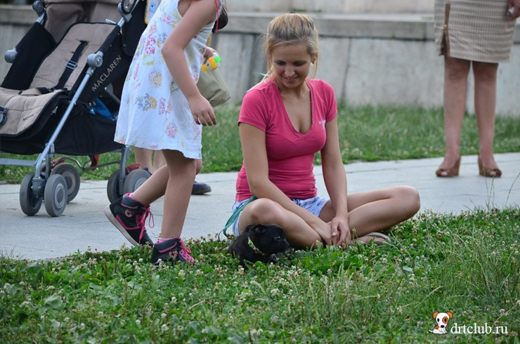 Девушка с щеночком