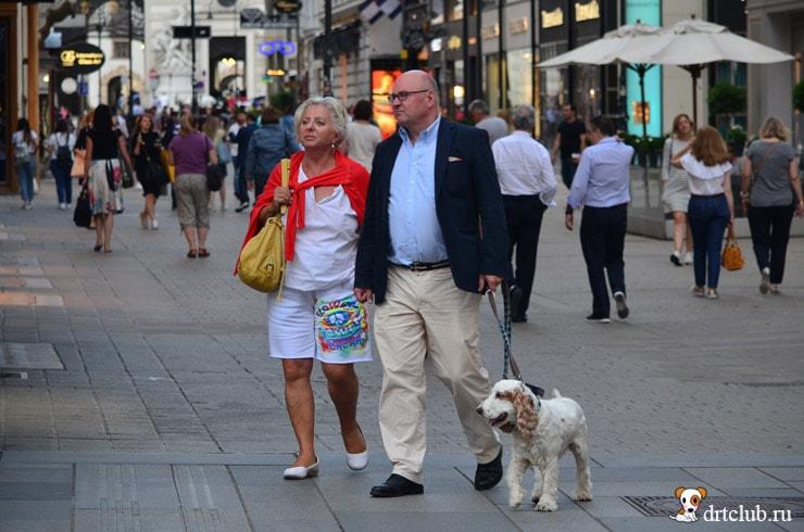 Австрийцы и собаки