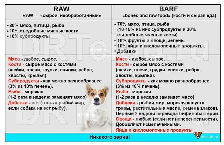 Сходство и различия типов питания RAW и BARF