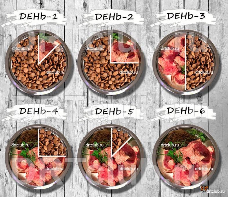 Перевод на сыроедение через раздельное питание