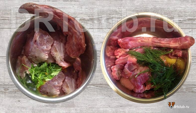 Система питания RAW для собак: что это такое