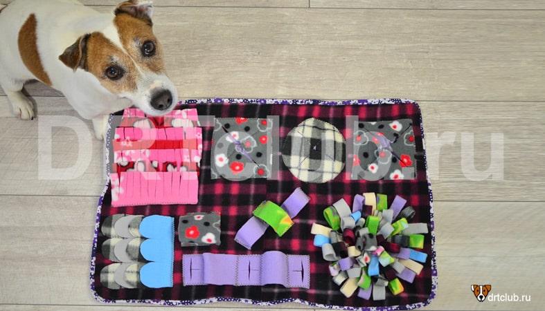 Первый вариант нюхательного коврика для собаки