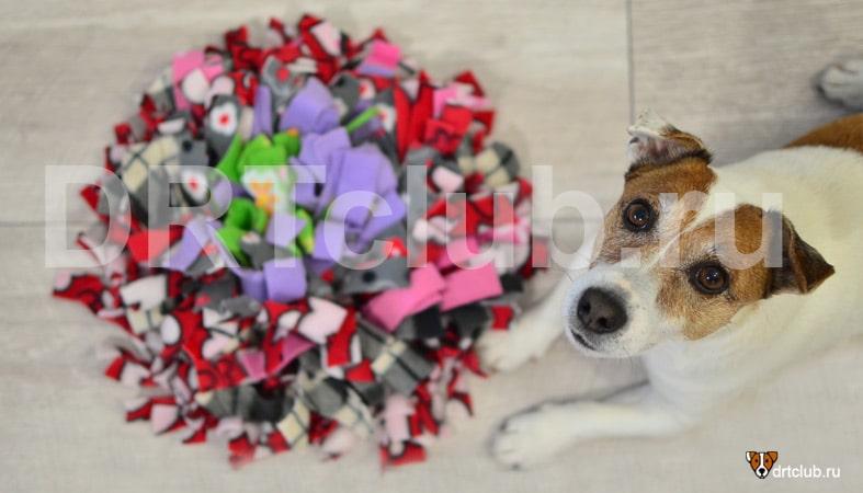 Второй вариант нюхательного коврика для собаки