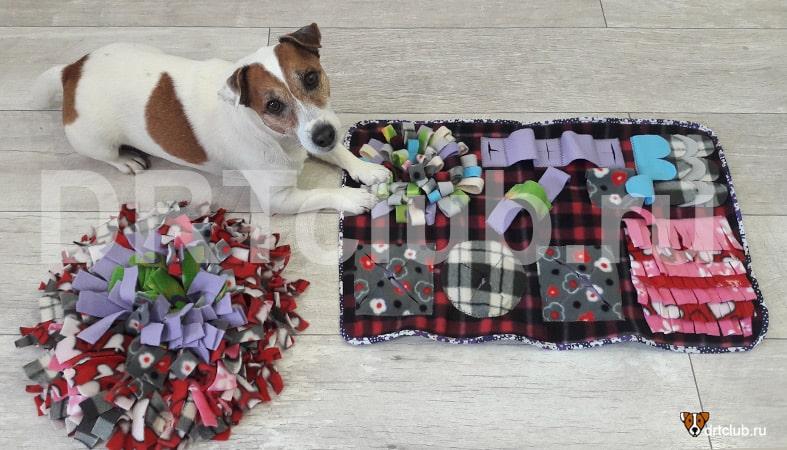 Нюхательный коврик для собак своими руками