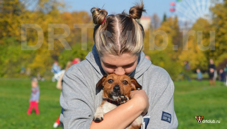 15 основных правил этикета для собаководов