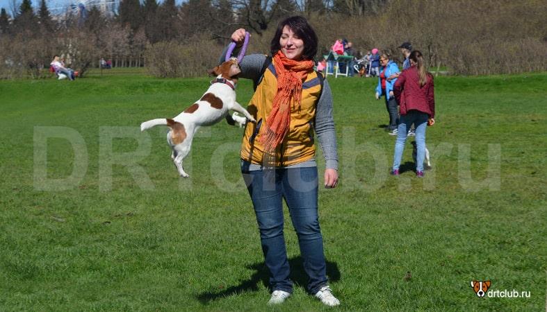 Не мешайте общению собаковода
