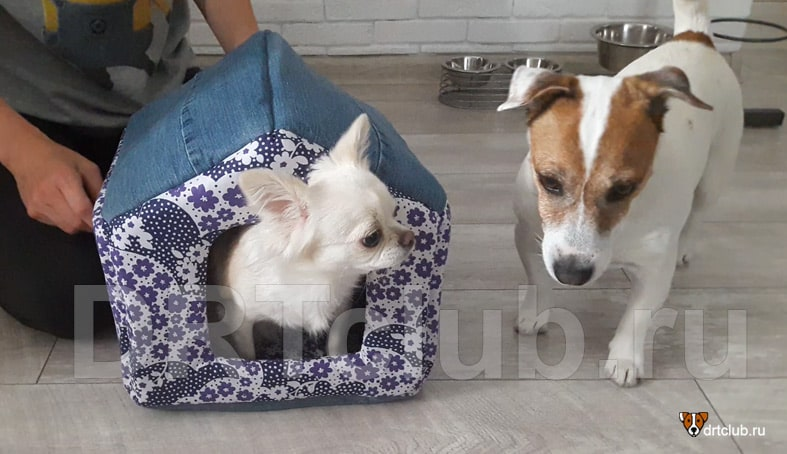 Домик для собаки полностью готов