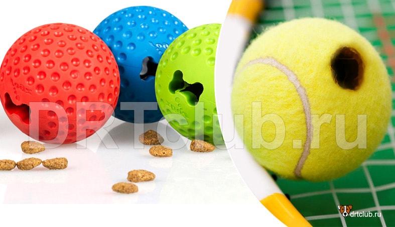 Теннисный мяч с лакомством
