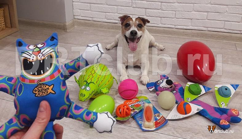 Прочные игрушки для собак вандалов