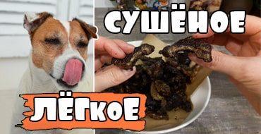 Лакомства для собак: сушёное лёгкое