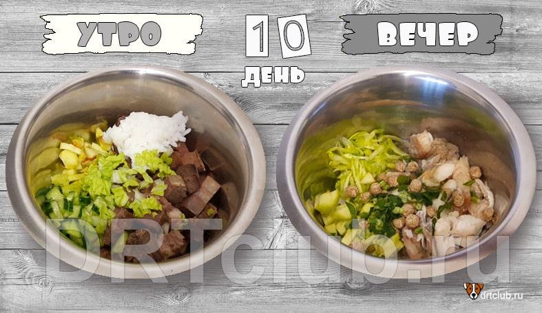 Чем кормить собаку на натуралке, рецепты
