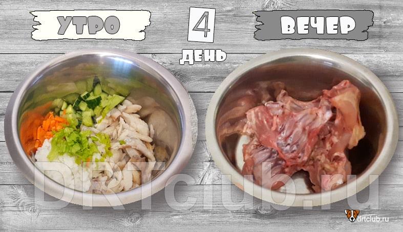 Натуральное питание собаки, рецепты