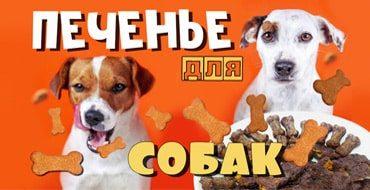 Печенье для собак своими руками