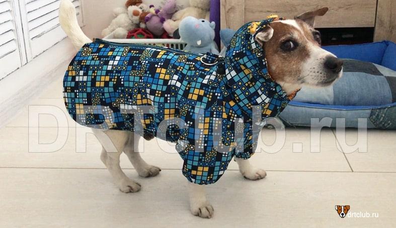 Тёплая демисезонная куртка для собаки