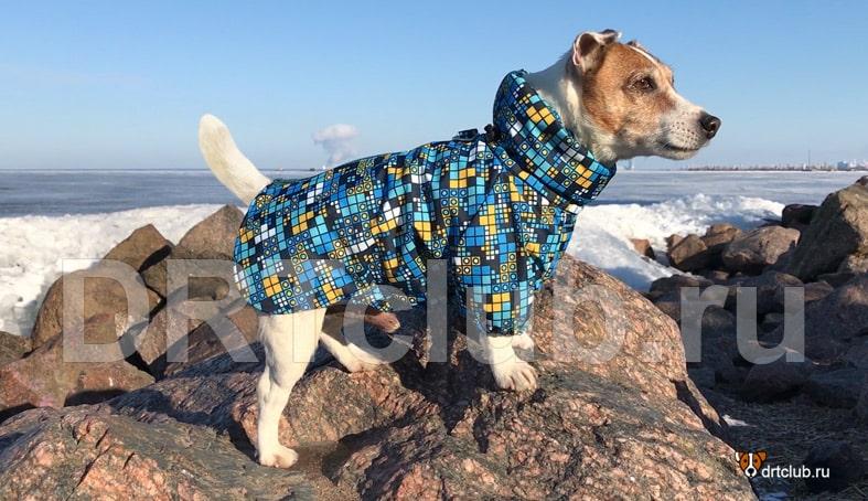 Куртка для собаки своими руками