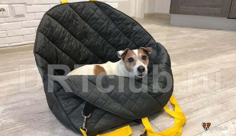 Автогамак для собаки своими руками