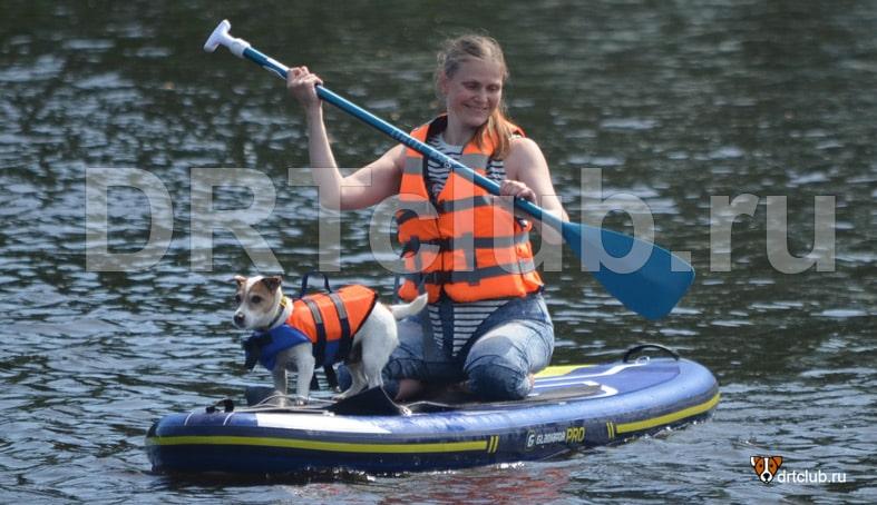 SUP-сёрфинг с собакой