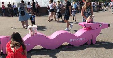 Фестивать для животных PETSHOP DAYS 2021
